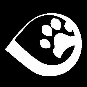 Defesa do direito animal e fim do especismo